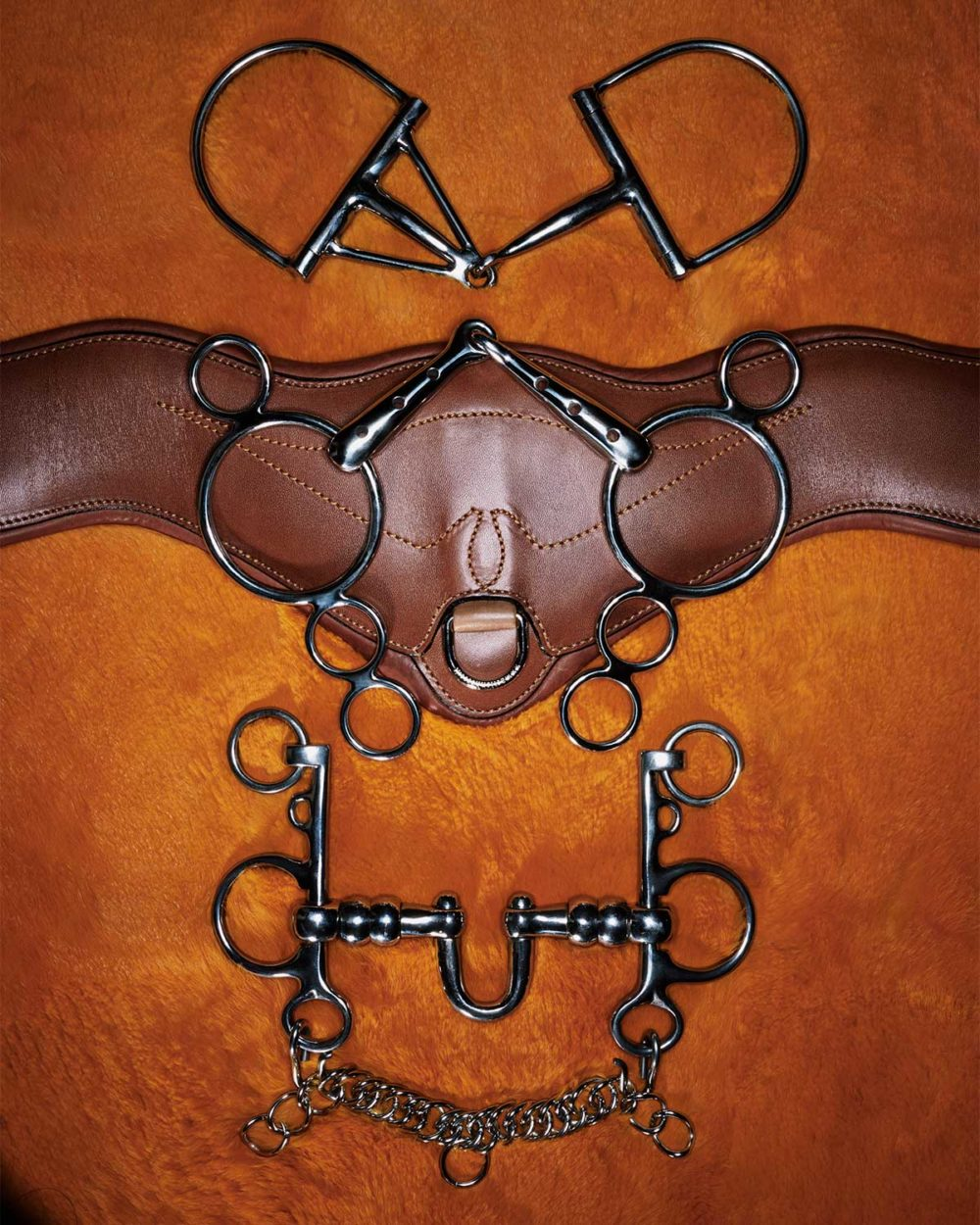Monica Stevenson Equestrian Photography - Bits and Pieces – Orange Bits
