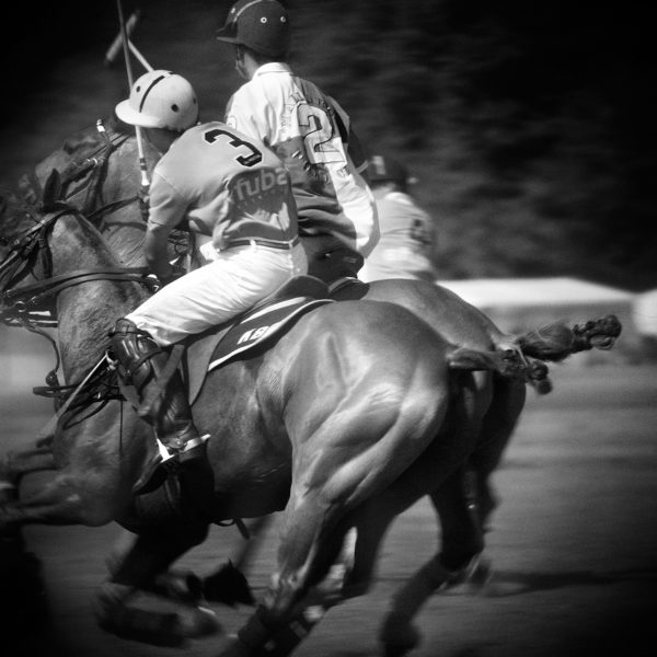 Monica Stevenson Equine Photography - polo power polo match