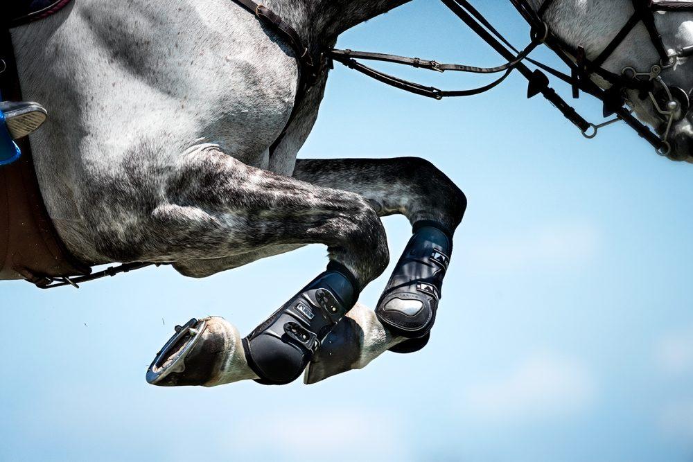 Monica Stevenson-HORSEscapes Show-Aerial A
